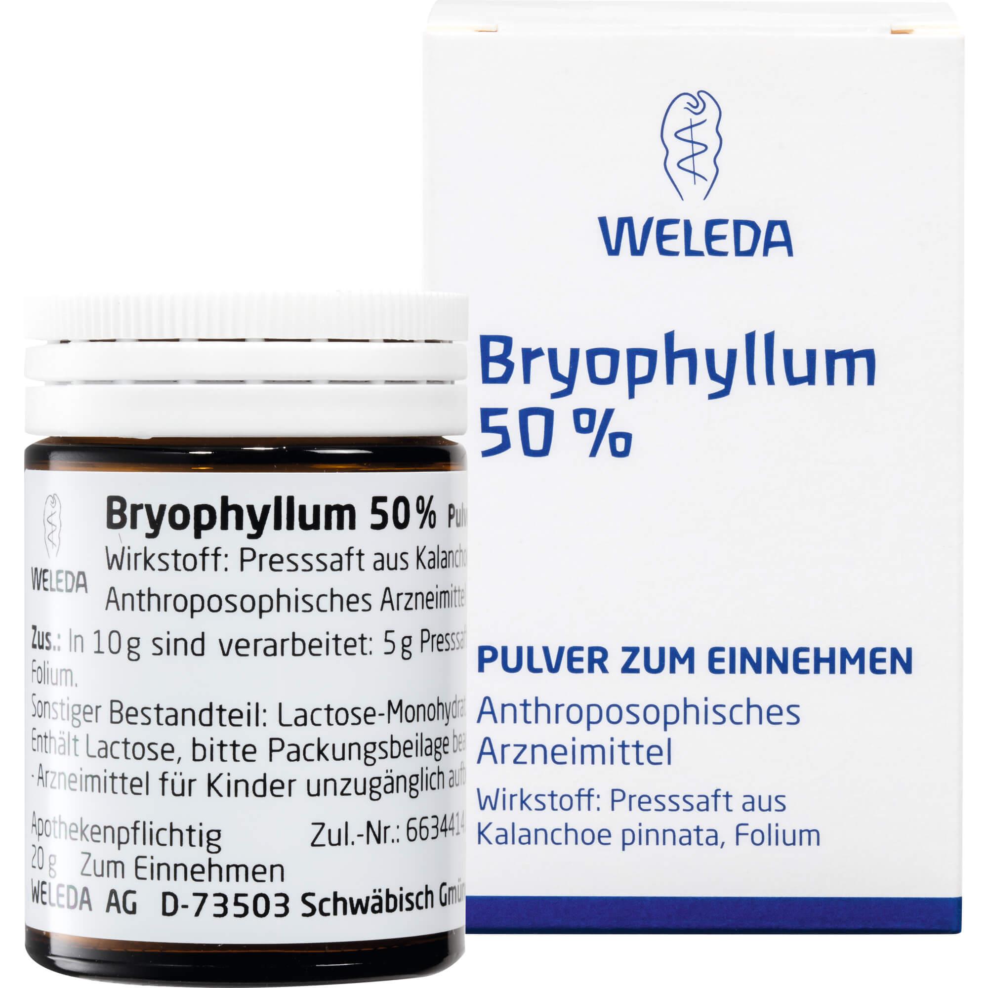 BRYOPHYLLUM-50-Pulver-zum-Einnehmen