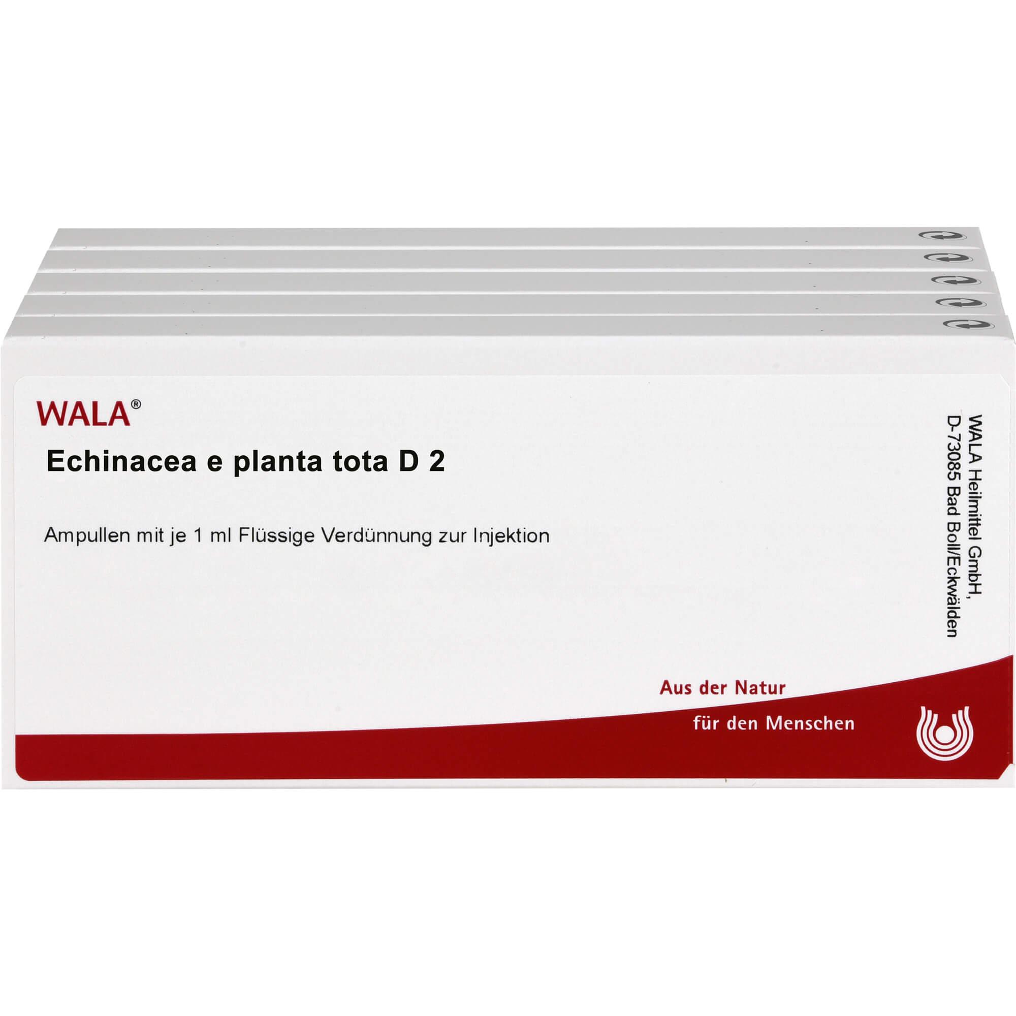ECHINACEA-E-planta-tota-D-2-Ampullen