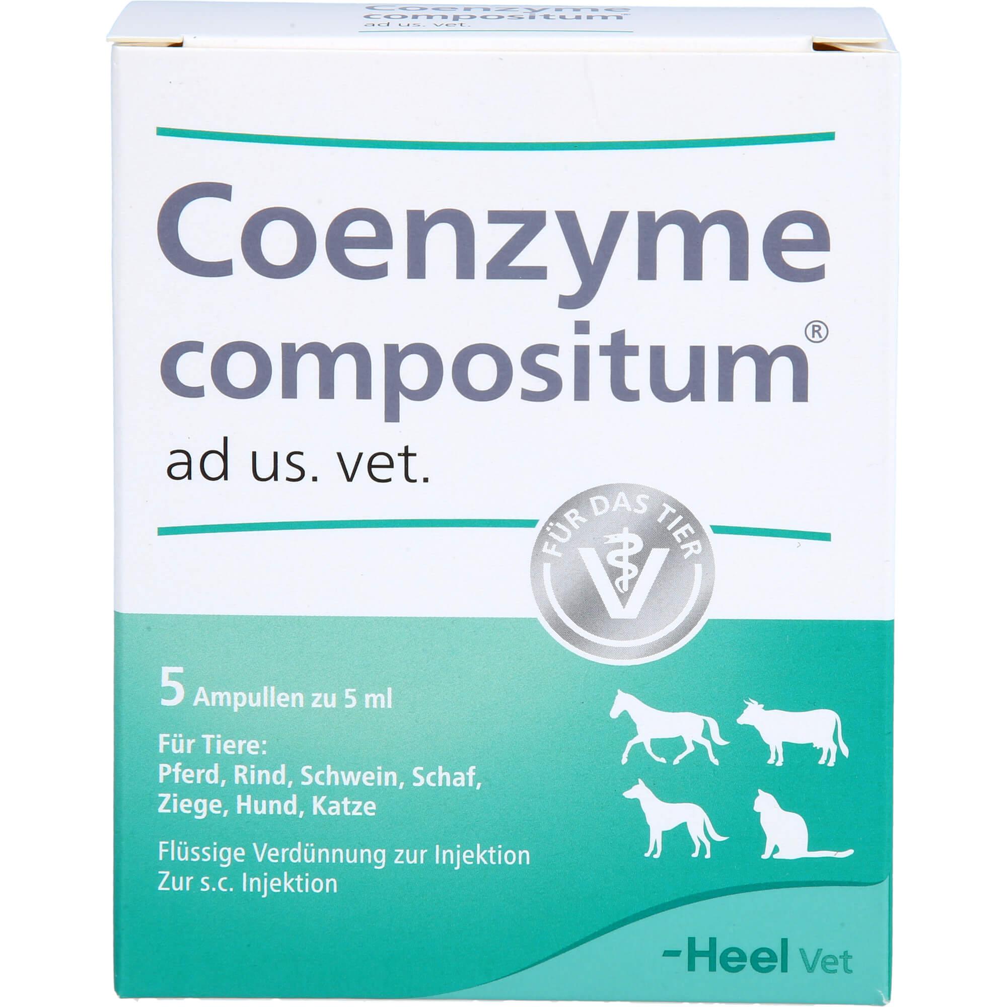 COENZYME-COMPOSITUM-ad-us-vet-Ampullen